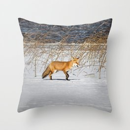 Red Tail Fox on Fish Hook Lake Throw Pillow