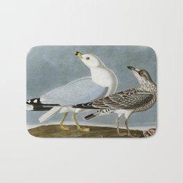 Vintage Seagull Illustration - Audubon Bath Mat