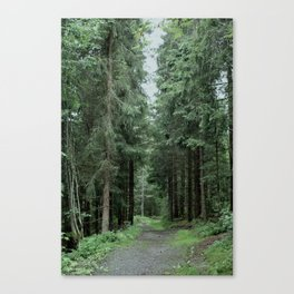 Running Path Canvas Print
