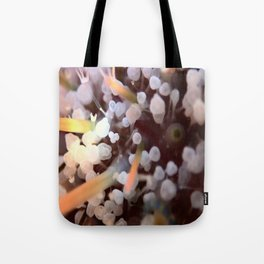 Urchin Toes Tote Bag