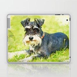 Miniature Schnauzer Watercolor Digital Art Laptop & iPad Skin