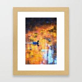 Mallard Duck's Sunset Framed Art Print