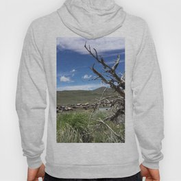 Ghost town twisted tree Hoody