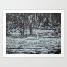 Silver Swan Swimming Monochrome Landscape Art Print