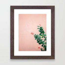 Floral photography print | Green on coral | Botanical photo art Framed Art Print