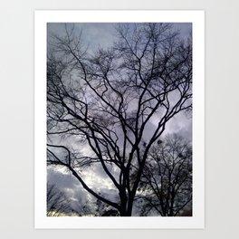 Haunted Sky and Trees Art Print