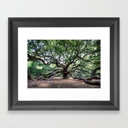 Oak of the Angels Framed Art Print