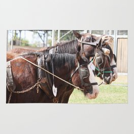 Clydesdales 4 Rug