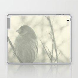 Subtlety Laptop & iPad Skin