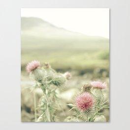 Scottish Flowers Canvas Print