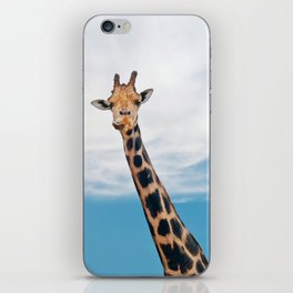 Giraffe neck and head against the clear blue sky iPhone Skin