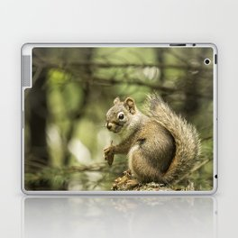 Who You Calling Squirrelly? Laptop & iPad Skin