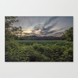 Smokey spring sunset in the woods Canvas Print
