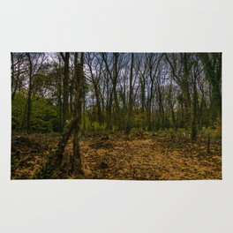 Autumn in the forest Rug