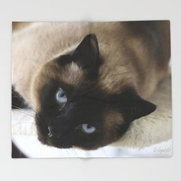 Siamese Soulful Expression Throw Blanket