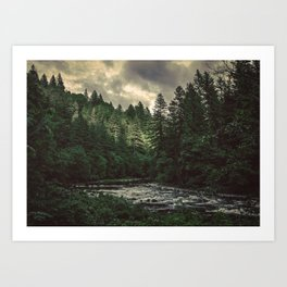 Pacific Northwest River - Nature Photography Art Print