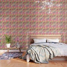cats-339 Wallpaper