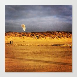 Dune wing Canvas Print