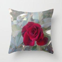 Red Bordo Rose Bloom Throw Pillow