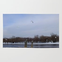 Seagulls on the Connecticut River in Winter Rug