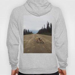 Road Fox Hoody