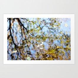 Reflection on Water Art Print
