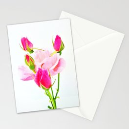 family roses Stationery Cards