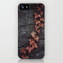 Autumn Rock, Secret Garden iPhone Case