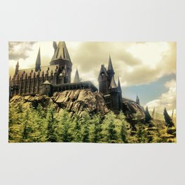 Hogwarts School of Witchcraft and Wizadry  Rug