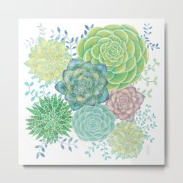 Colorful Succulents (white background) Metal Print
