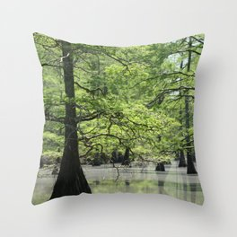 Cypress Trees in the Louisiana Swamp Throw Pillow