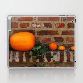 Gourds On A Windowsill Laptop & iPad Skin