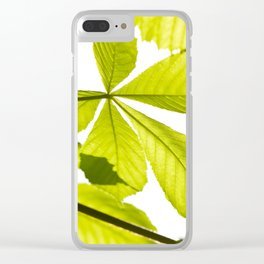 Aesculus horse chestnut foliage Clear iPhone Case