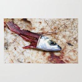 Fish Bait Rug