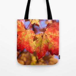 Autumn in Canada - Maple leafs Tote Bag