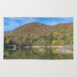 Autumn lake view in France Rug