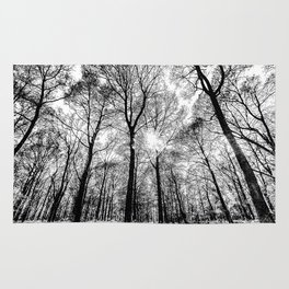 The Forests Sketch Rug
