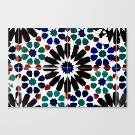 Time-worn tiles Canvas Print