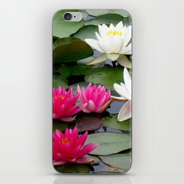 Water Lilies - Pink and White iPhone Skin