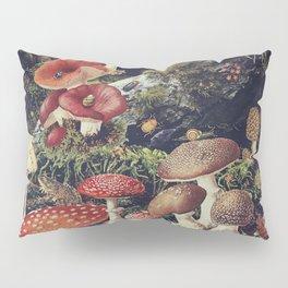 Enchantment Pillow Sham