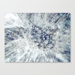 AERIAL. Frozen forest in winter Canvas Print