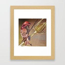 Birds In Armor Framed Art Print