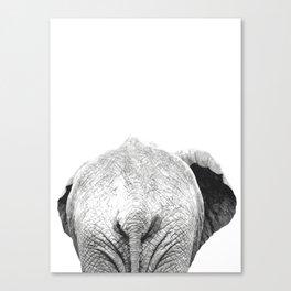 Black and white elephant animal jungle Canvas Print