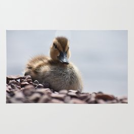 Duckling Rug