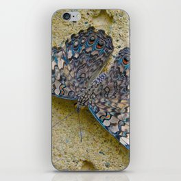 Turquoise and Sand Butterfly by Teresa Thompson iPhone Skin