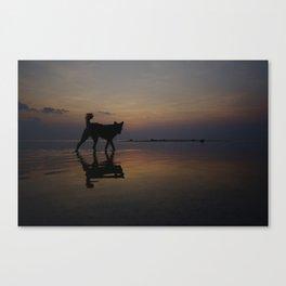 Sunset Hunter, Ko Samui, Thailand (1 of 2) Canvas Print