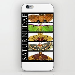 Moths of North America iPhone Skin