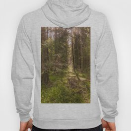 Summer forest Hoody