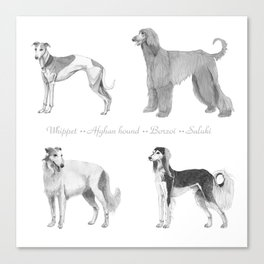 4 Hounds Canvas Print