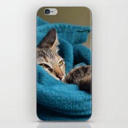 Arabela, the cat. iPhone Skin